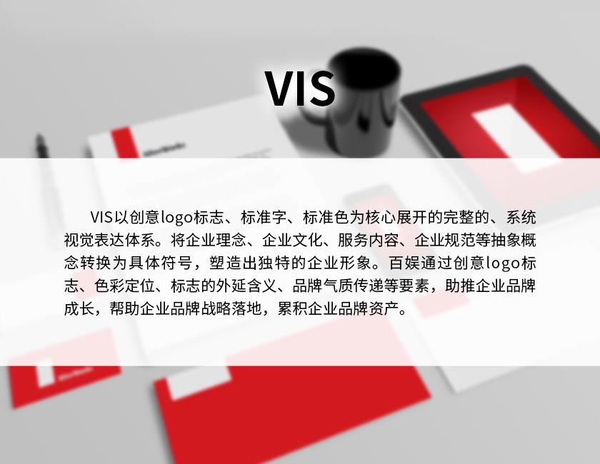 1VIS-2.jpg